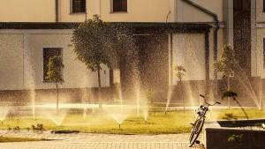 Fahrrad-Hitze